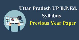 Uttar Pradesh UP B.P.Ed. Syllabus & Previous Year Paper